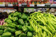 加快多類農產品檢測技術研究 為守護餐桌安全添磚加瓦